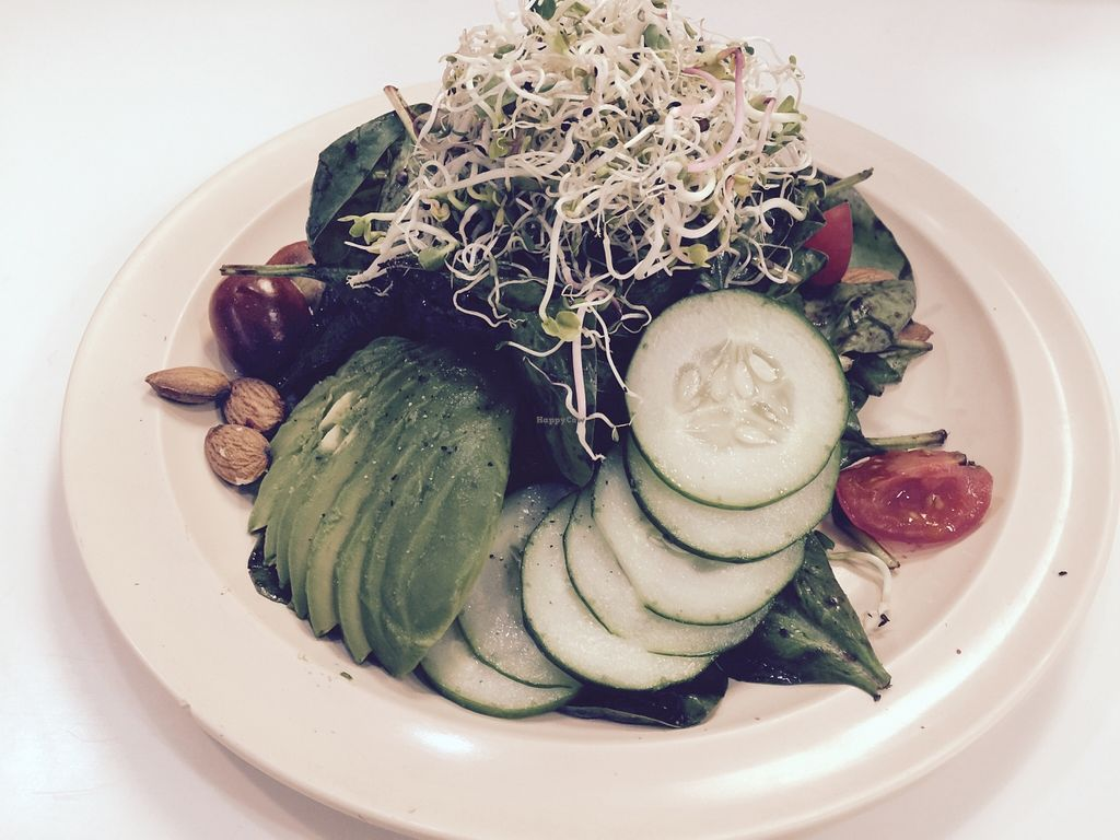 """Photo of Willoughby's Beyond Juice  by <a href=""""/members/profile/beyondjuice"""">beyondjuice</a> <br/>Asian Ginger Salad-- without tuna. Cucumber, sprouts, tomatoes, almonds, raisins,avocado red onions,and cilantro ginger dressing  <br/> December 18, 2015  - <a href='/contact/abuse/image/67009/128907'>Report</a>"""