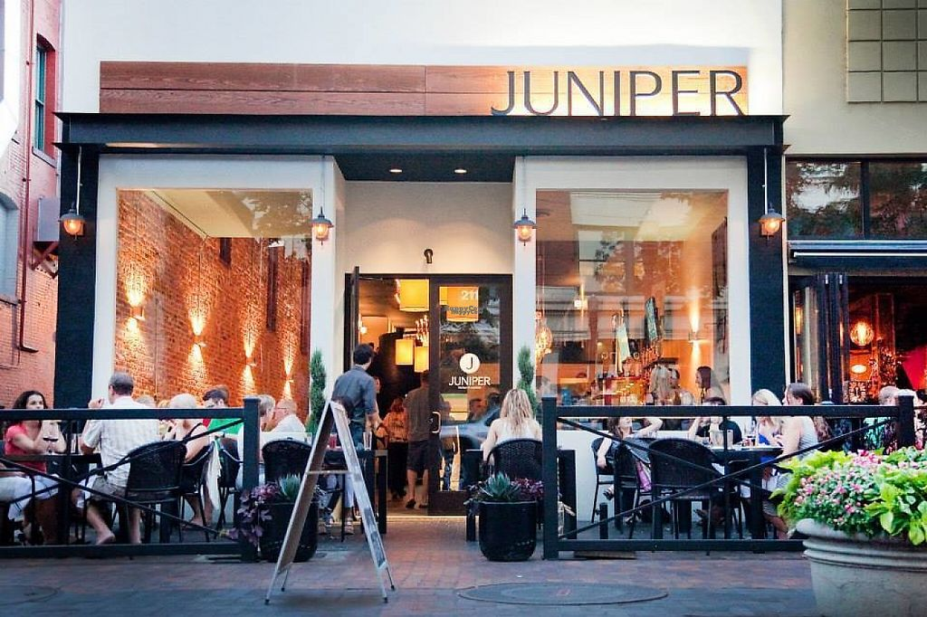 """Photo of Juniper  by <a href=""""/members/profile/community4"""">community4</a> <br/>Juniper <br/> February 25, 2017  - <a href='/contact/abuse/image/67032/230263'>Report</a>"""