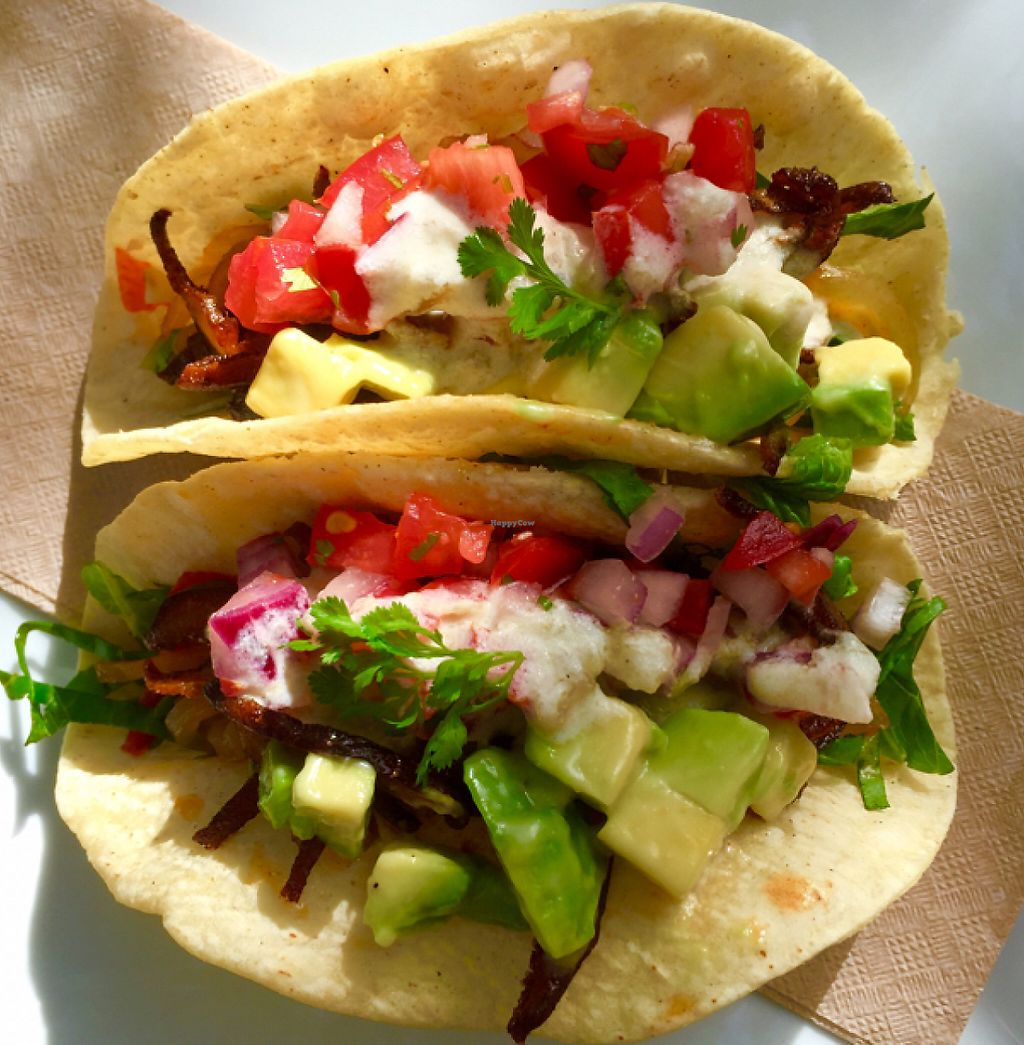 """Photo of CLOSED: Plantae  by <a href=""""/members/profile/Ellenkm"""">Ellenkm</a> <br/>mushroom taco special <br/> July 11, 2016  - <a href='/contact/abuse/image/67077/212801'>Report</a>"""