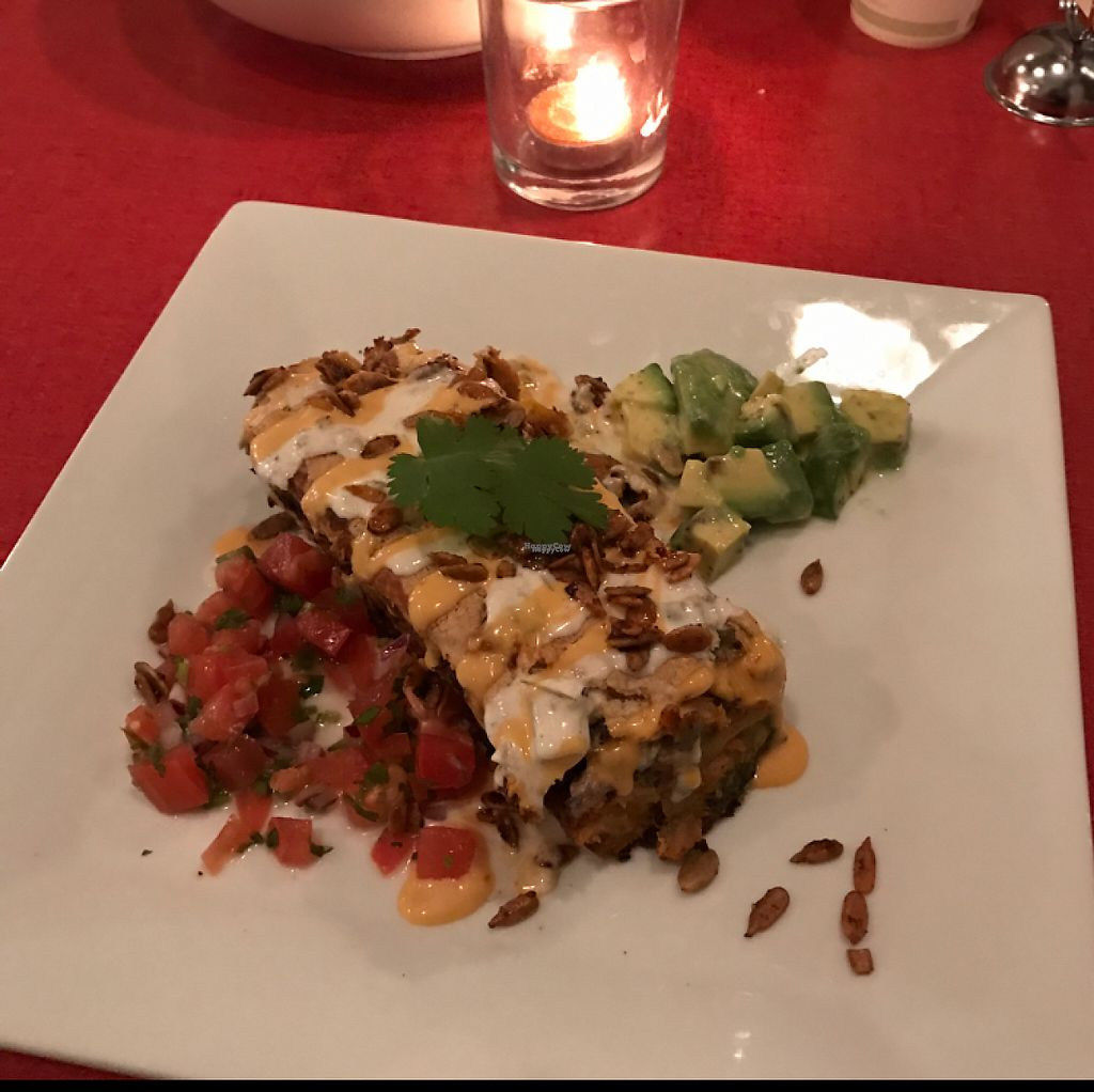 """Photo of CLOSED: Plantae  by <a href=""""/members/profile/Bowtruckle"""">Bowtruckle</a> <br/>Vegan Enchilada <br/> February 4, 2017  - <a href='/contact/abuse/image/67077/221814'>Report</a>"""