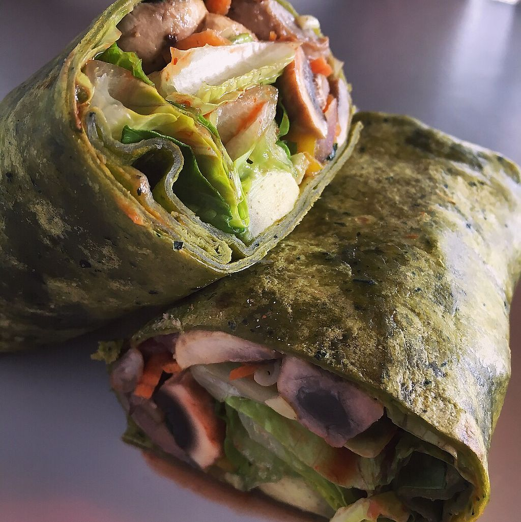 """Photo of Nokturne  by <a href=""""/members/profile/StephanieWilson"""">StephanieWilson</a> <br/>Veggie Burrito ?  <br/> March 24, 2018  - <a href='/contact/abuse/image/67157/375431'>Report</a>"""