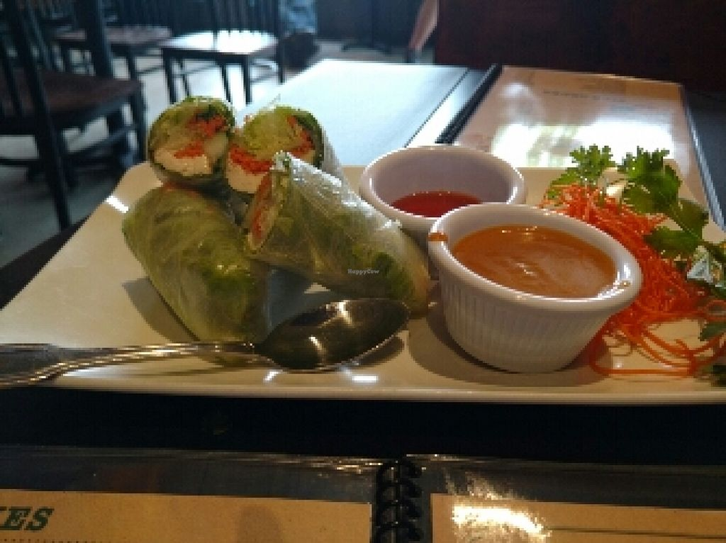 """Photo of Veganic Thai Cafe  by <a href=""""/members/profile/cranberries2"""">cranberries2</a> <br/>summer rolls  <br/> April 7, 2016  - <a href='/contact/abuse/image/67161/143282'>Report</a>"""