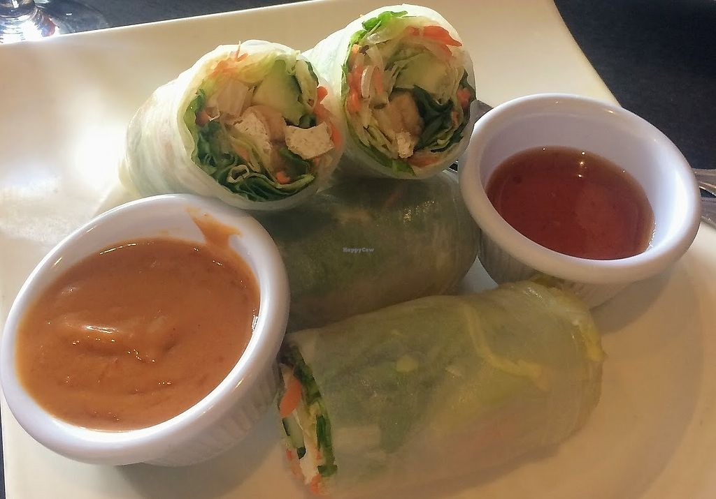 """Photo of Veganic Thai Cafe  by <a href=""""/members/profile/fullbellyhappyheart"""">fullbellyhappyheart</a> <br/>Summer rolls with peanut sauce and plum sauce. LOVE the peanut sauce <br/> June 20, 2017  - <a href='/contact/abuse/image/67161/271226'>Report</a>"""