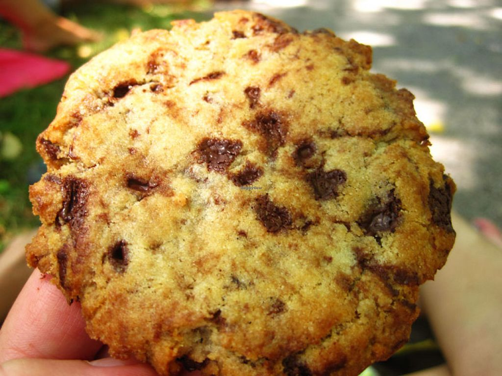 "Photo of Cafe Dei Campi  by <a href=""/members/profile/Babette"">Babette</a> <br/>Chocolate chip cookie. It is chewy, melty, tasty. Take it <br/> July 9, 2016  - <a href='/contact/abuse/image/67269/158543'>Report</a>"