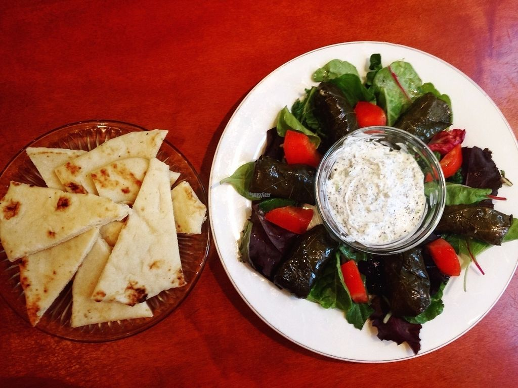 """Photo of CLOSED: The Knight Kaffee  by <a href=""""/members/profile/TKKaffee"""">TKKaffee</a> <br/>The Grape Leaves Plate <br/> August 6, 2016  - <a href='/contact/abuse/image/67279/166286'>Report</a>"""