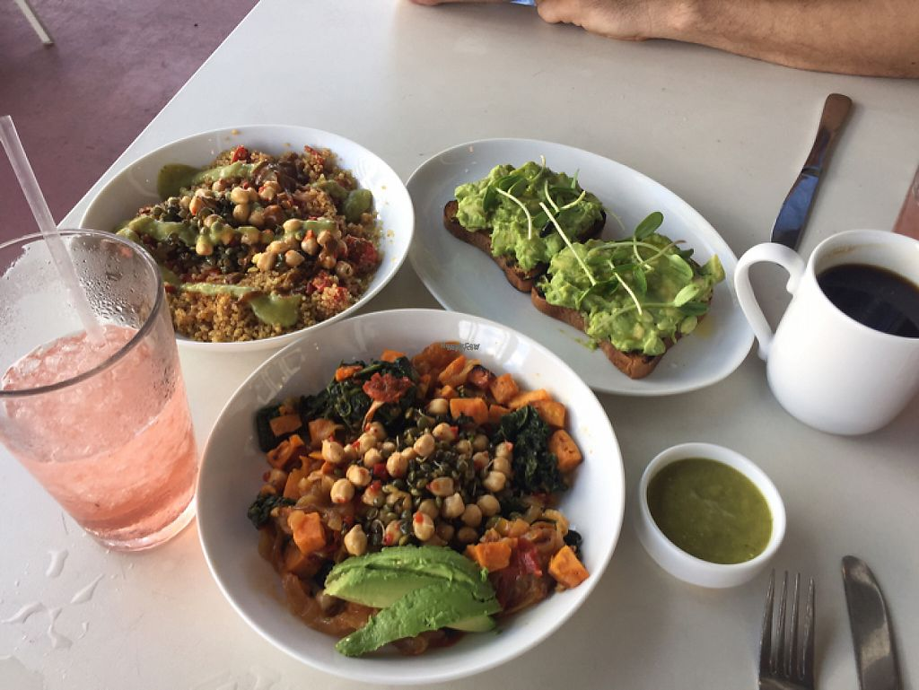 """Photo of Dirt Eat Clean  by <a href=""""/members/profile/Veganmeower"""">Veganmeower</a> <br/>yum <br/> November 20, 2016  - <a href='/contact/abuse/image/67410/192732'>Report</a>"""