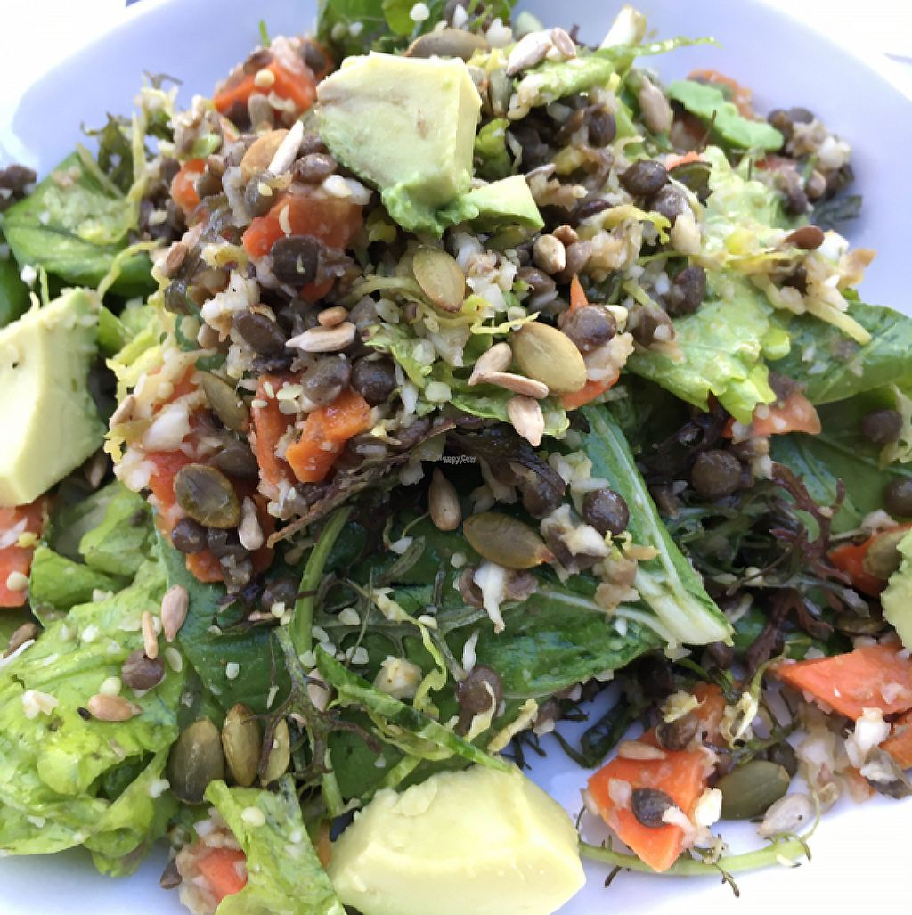 """Photo of Dirt Eat Clean  by <a href=""""/members/profile/daroff"""">daroff</a> <br/>Autumn Salad <br/> December 27, 2016  - <a href='/contact/abuse/image/67410/205369'>Report</a>"""