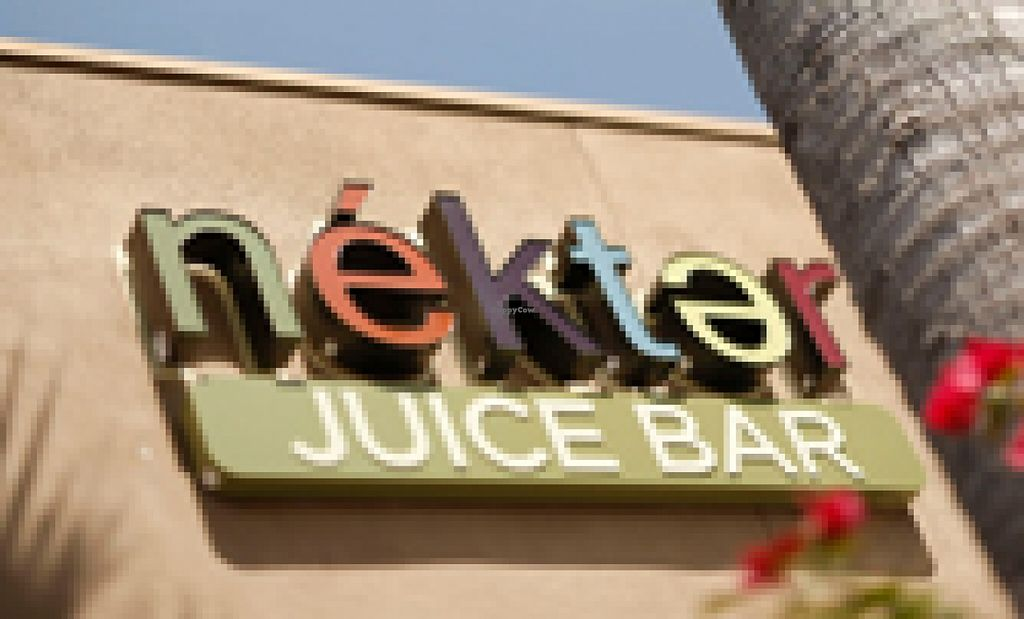 "Photo of Nekter Juice Bar  by <a href=""/members/profile/Napa%20Valley%20Vegan"">Napa Valley Vegan</a> <br/>Exterior signage <br/> February 23, 2016  - <a href='/contact/abuse/image/67460/137448'>Report</a>"