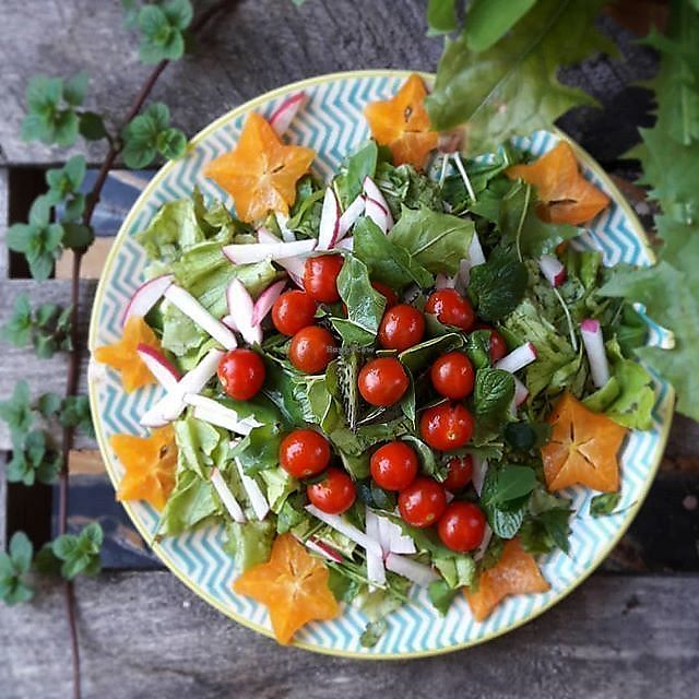 """Photo of La Cocina de Sofia  by <a href=""""/members/profile/MexicanVeganPower"""">MexicanVeganPower</a> <br/>Healing salad with herbs and fruits from our urban garden <br/> March 28, 2018  - <a href='/contact/abuse/image/67508/377541'>Report</a>"""