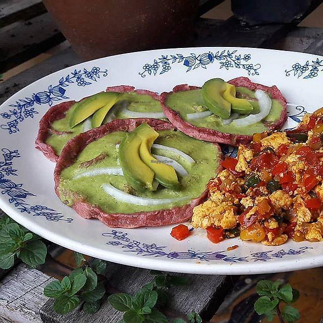 """Photo of La Cocina de Sofia  by <a href=""""/members/profile/MexicanVeganPower"""">MexicanVeganPower</a> <br/>Tradicional breakfast of Veracruz """"Picadas con salsa verde y huevos revueltos"""" (scrambled tofu) <br/> March 28, 2018  - <a href='/contact/abuse/image/67508/377542'>Report</a>"""