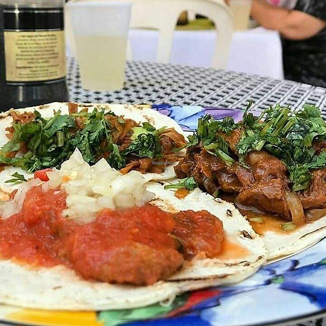 "Photo of La Cocina de Sofia  by <a href=""/members/profile/MexicanVeganPower"">MexicanVeganPower</a> <br/>Real Mexican tacos 100% VEGAN!, chicharrón en salsa y cochinita pibil  <br/> March 28, 2018  - <a href='/contact/abuse/image/67508/377546'>Report</a>"