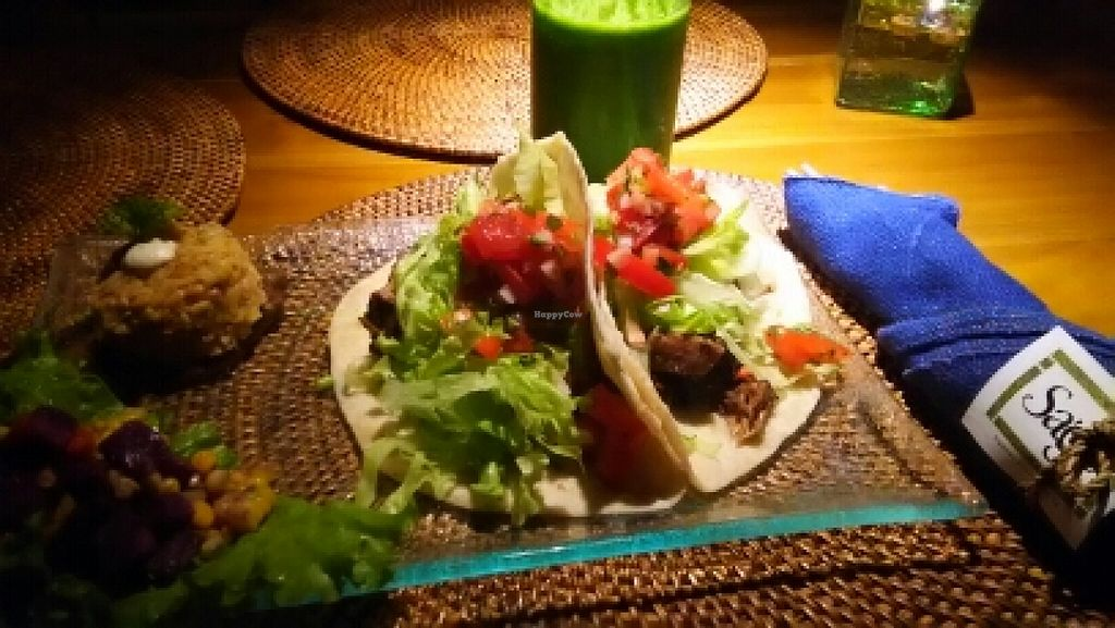 """Photo of Sage  by <a href=""""/members/profile/adoremus523"""">adoremus523</a> <br/>jackfruit asada tacos <br/> December 27, 2015  - <a href='/contact/abuse/image/67565/129994'>Report</a>"""