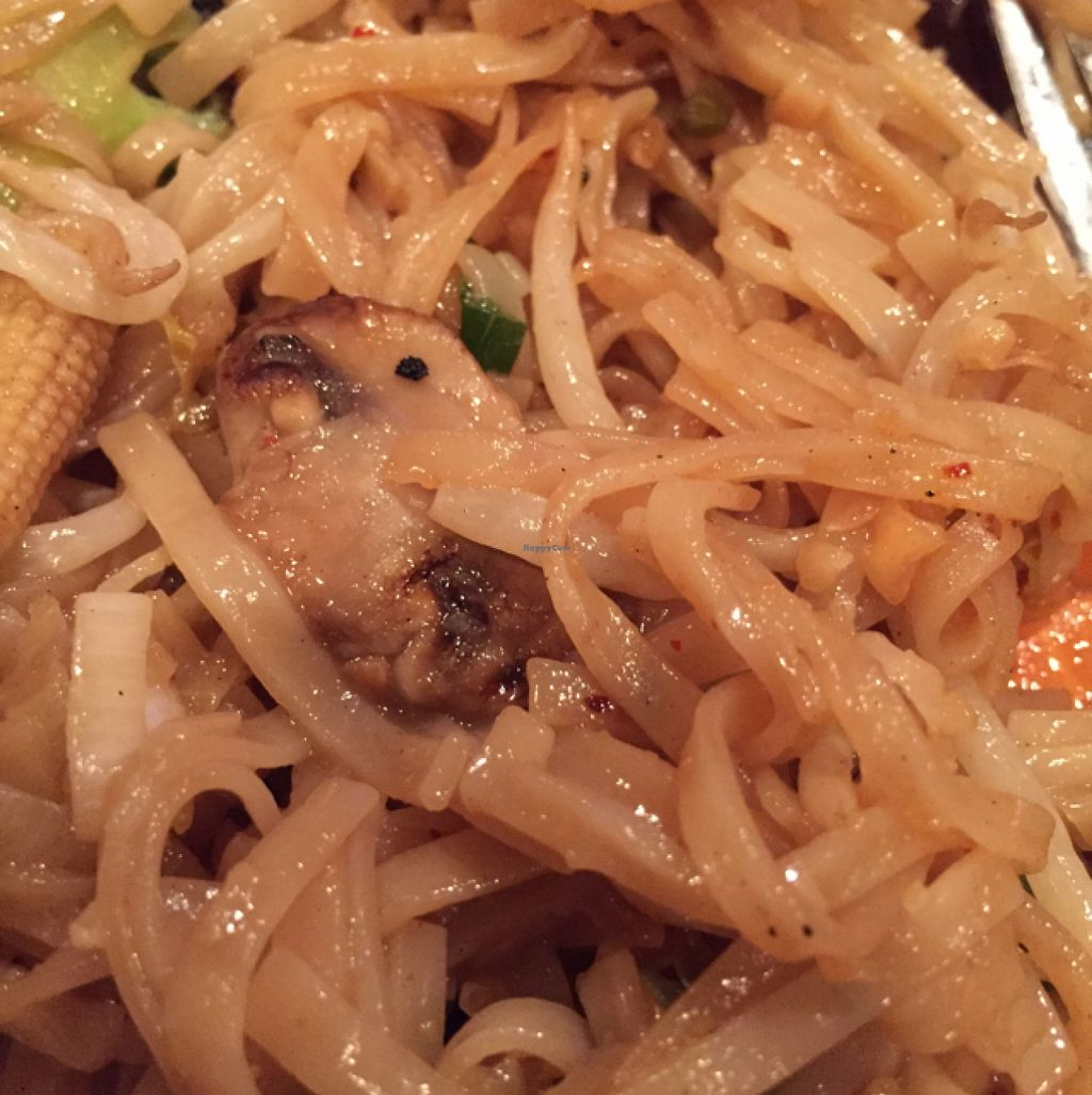 """Photo of Dancing Noodle  by <a href=""""/members/profile/cwarrick1"""">cwarrick1</a> <br/>Pad Thai, 3 stars  <br/> December 29, 2015  - <a href='/contact/abuse/image/67632/130319'>Report</a>"""