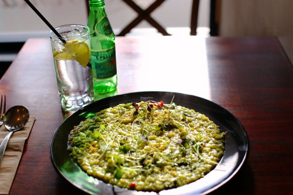 "Photo of La Veneta  by <a href=""/members/profile/wrathofmanatee"">wrathofmanatee</a> <br/>Creamy broccolini & chilli risotto w/ macadamia fetta  <br/> June 3, 2017  - <a href='/contact/abuse/image/67636/265339'>Report</a>"