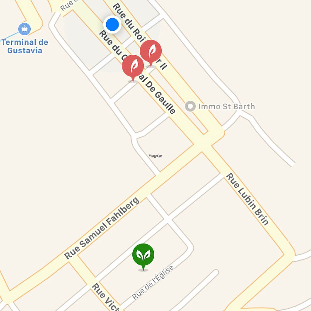 """Photo of Tom's Juice Bar  by <a href=""""/members/profile/veganmom"""">veganmom</a> <br/>green dot, incorrect location on vegimaps, blue actual location <br/> November 24, 2016  - <a href='/contact/abuse/image/67688/193933'>Report</a>"""