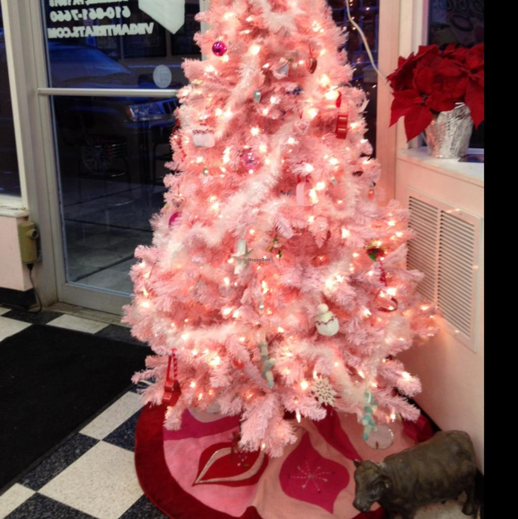"""Photo of Vegan Treats Bakery  by <a href=""""/members/profile/Tigra220"""">Tigra220</a> <br/>love the pink tree! <br/> January 28, 2015  - <a href='/contact/abuse/image/6784/91597'>Report</a>"""