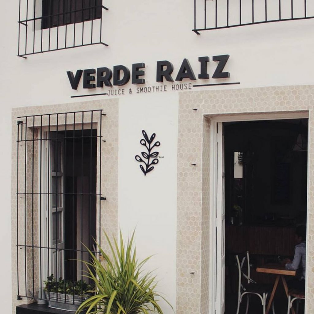 """Photo of Verde Raiz  by <a href=""""/members/profile/community"""">community</a> <br/>Verde Raiz <br/> January 5, 2016  - <a href='/contact/abuse/image/67917/131173'>Report</a>"""