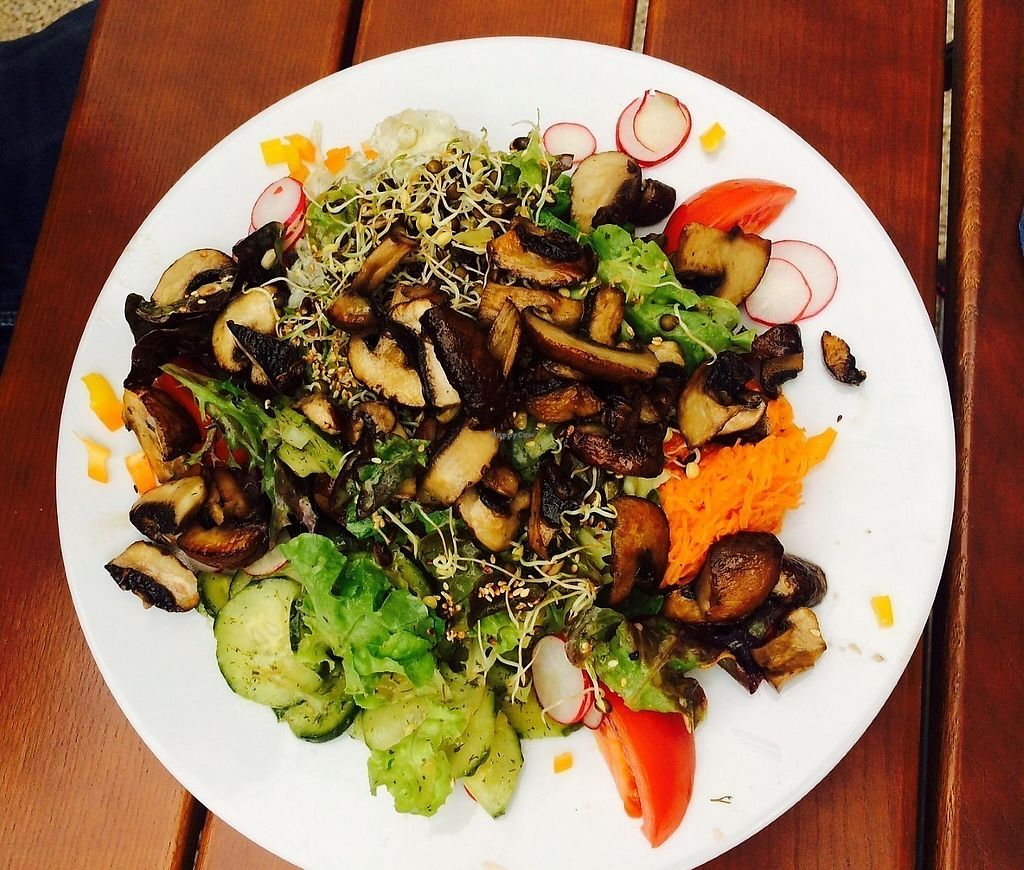 "Photo of Gasthaus zum Anker  by <a href=""/members/profile/Marin100"">Marin100</a> <br/>Gemischter Salat mit Champignons <br/> August 31, 2017  - <a href='/contact/abuse/image/67995/299330'>Report</a>"