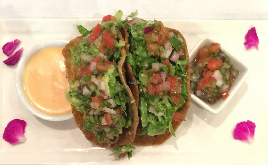 """Photo of Pure Food and Juice  by <a href=""""/members/profile/earthville"""">earthville</a> <br/>street tacos <br/> September 3, 2016  - <a href='/contact/abuse/image/68058/217899'>Report</a>"""