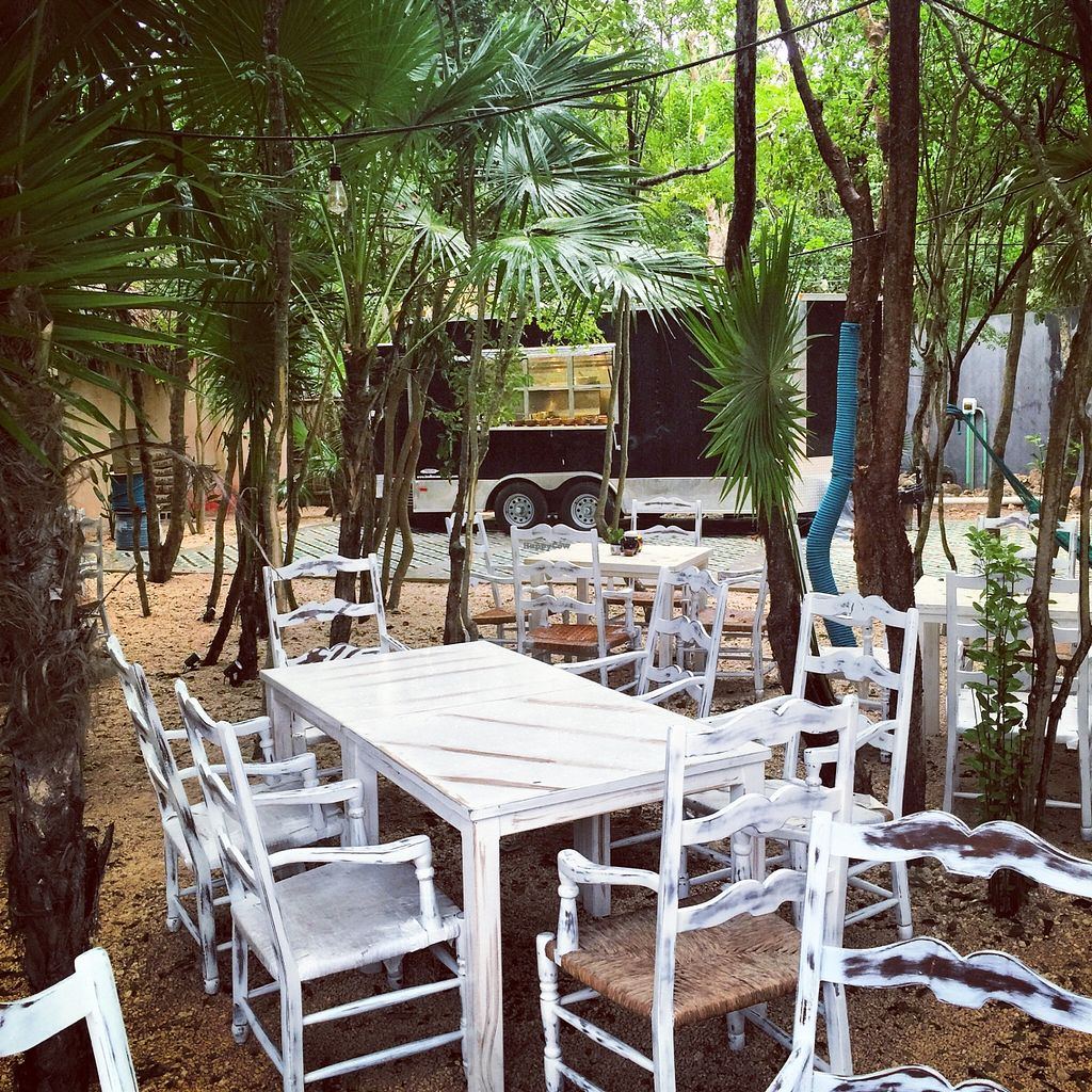 """Photo of Charly's Vegan Tacos - Food Truck  by <a href=""""/members/profile/Alexfezz"""">Alexfezz</a> <br/>Table area in Jungle with Truck in Background <br/> January 9, 2016  - <a href='/contact/abuse/image/68102/131615'>Report</a>"""