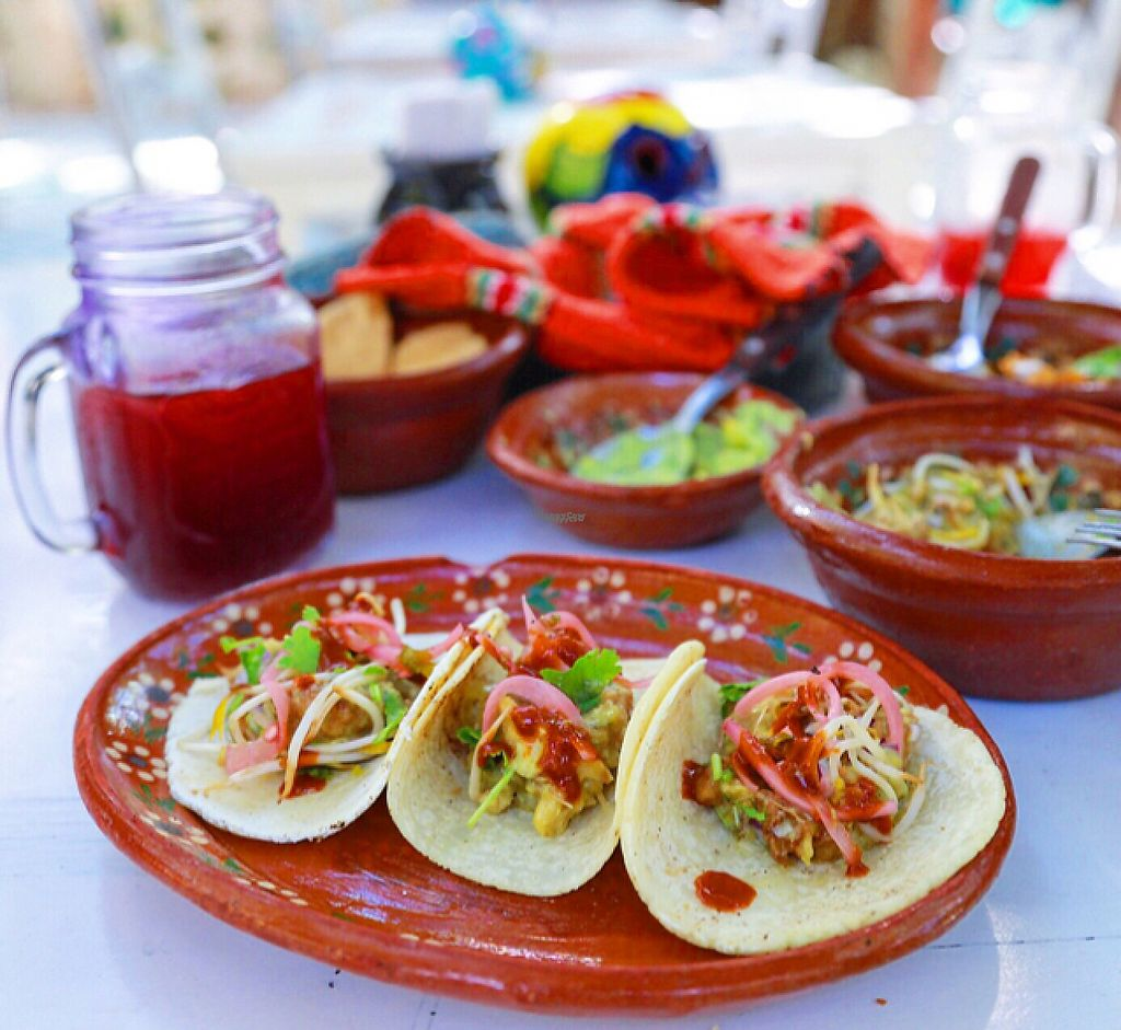 """Photo of Charly's Vegan Tacos - Food Truck  by <a href=""""/members/profile/Rubysunn"""">Rubysunn</a> <br/>taco bowl with a side of tortillas and a big serving of help yourself pickled onion <br/> December 3, 2016  - <a href='/contact/abuse/image/68102/196958'>Report</a>"""