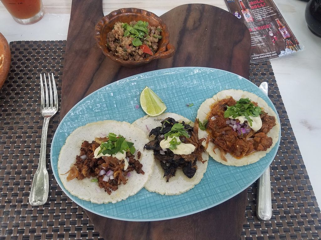 """Photo of Charly's Vegan Tacos - Food Truck  by <a href=""""/members/profile/Heather%20Vegan%20Diggs"""">Heather Vegan Diggs</a> <br/>Tacos Trio <br/> July 20, 2017  - <a href='/contact/abuse/image/68102/282639'>Report</a>"""