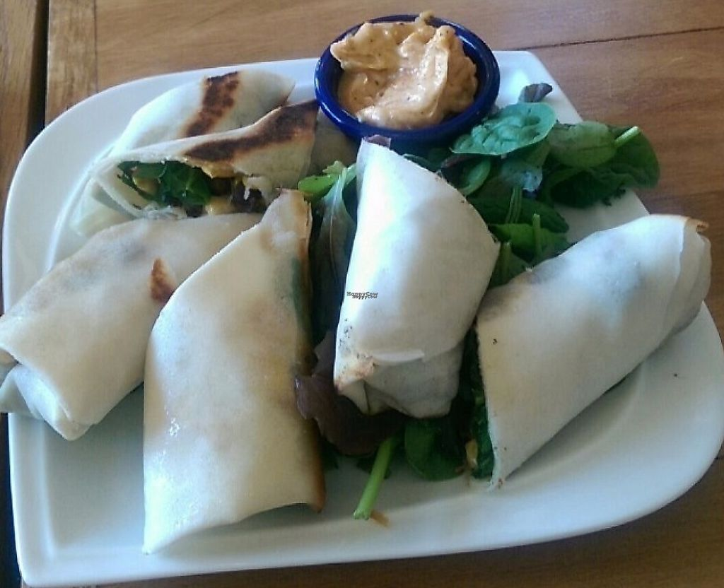 """Photo of Root  by <a href=""""/members/profile/twhaley1990"""">twhaley1990</a> <br/>Black bean and corn spring rolls with a spicy """"mayo"""" <br/> December 31, 2016  - <a href='/contact/abuse/image/68124/223381'>Report</a>"""