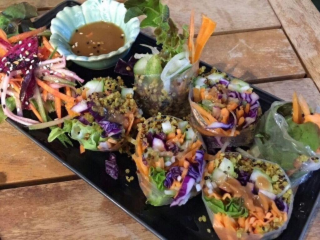 """Photo of REMOVED: Yogi Cafe - Zen Retreat  by <a href=""""/members/profile/Tastyvege"""">Tastyvege</a> <br/>Fresh spring roll, sauce is awesome <br/> July 1, 2016  - <a href='/contact/abuse/image/68153/157174'>Report</a>"""