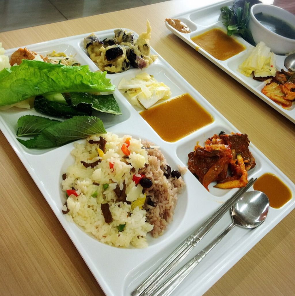 "Photo of Seoul National University Vegan Buffet - 서울대학교 채식뷔페  by <a href=""/members/profile/ItalianChick"">ItalianChick</a> <br/>Vegan buffet <br/> January 14, 2016  - <a href='/contact/abuse/image/68241/132381'>Report</a>"