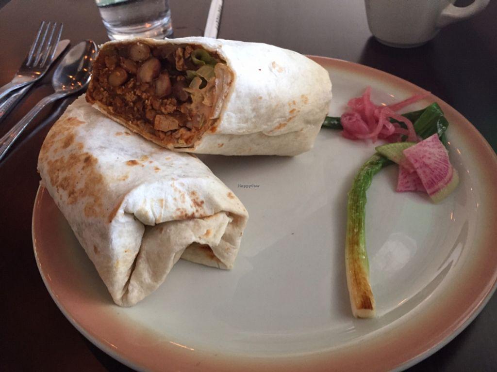 "Photo of Chive Kitchen  by <a href=""/members/profile/911scmadness"">911scmadness</a> <br/>Chorizo Burrito!! <br/> April 12, 2016  - <a href='/contact/abuse/image/68260/144219'>Report</a>"