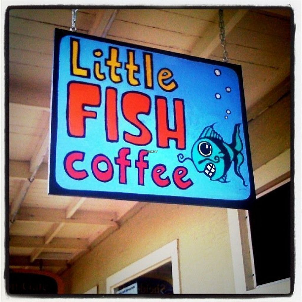 """Photo of Little Fish Coffee  by <a href=""""/members/profile/community"""">community</a> <br/>Little Fish Coffee <br/> February 7, 2017  - <a href='/contact/abuse/image/68297/224049'>Report</a>"""
