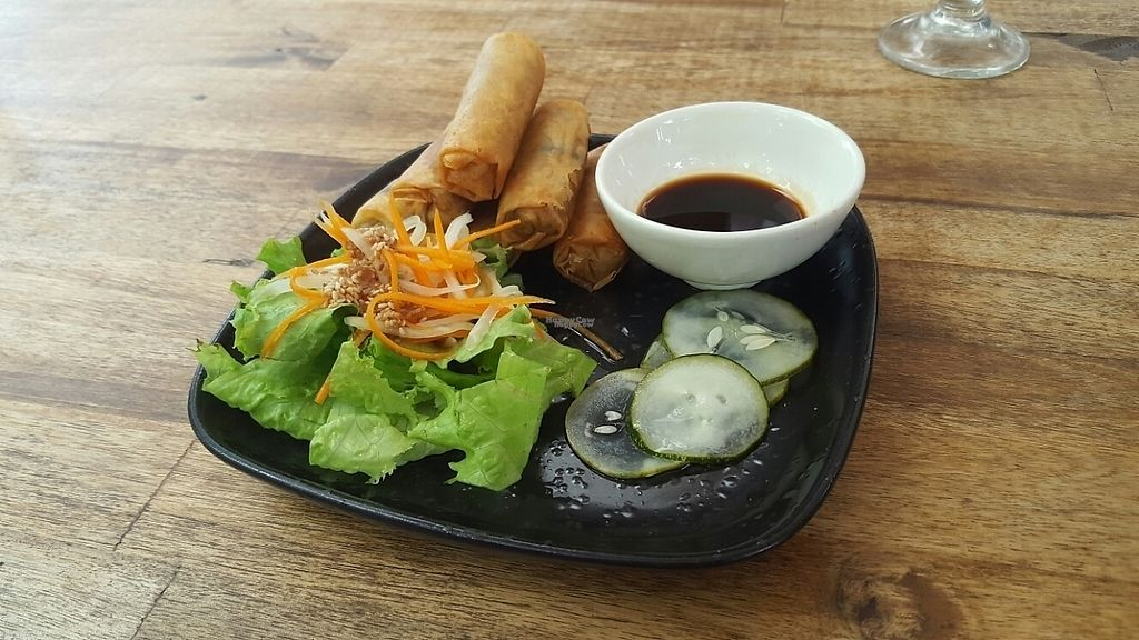 """Photo of Annen Vegetarian & Yoga  by <a href=""""/members/profile/GuruYoga"""">GuruYoga</a> <br/>very tasty spring rolls <br/> April 28, 2017  - <a href='/contact/abuse/image/68316/253341'>Report</a>"""