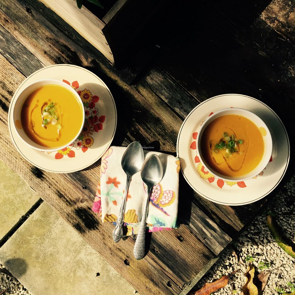 """Photo of Artichoke Foods  by <a href=""""/members/profile/MarieLaPachamama"""">MarieLaPachamama</a> <br/>ginger, carrot and squash soup. all organic ingredients and home made!!! delicious and super healthy dishes! <br/> January 14, 2016  - <a href='/contact/abuse/image/68323/132354'>Report</a>"""