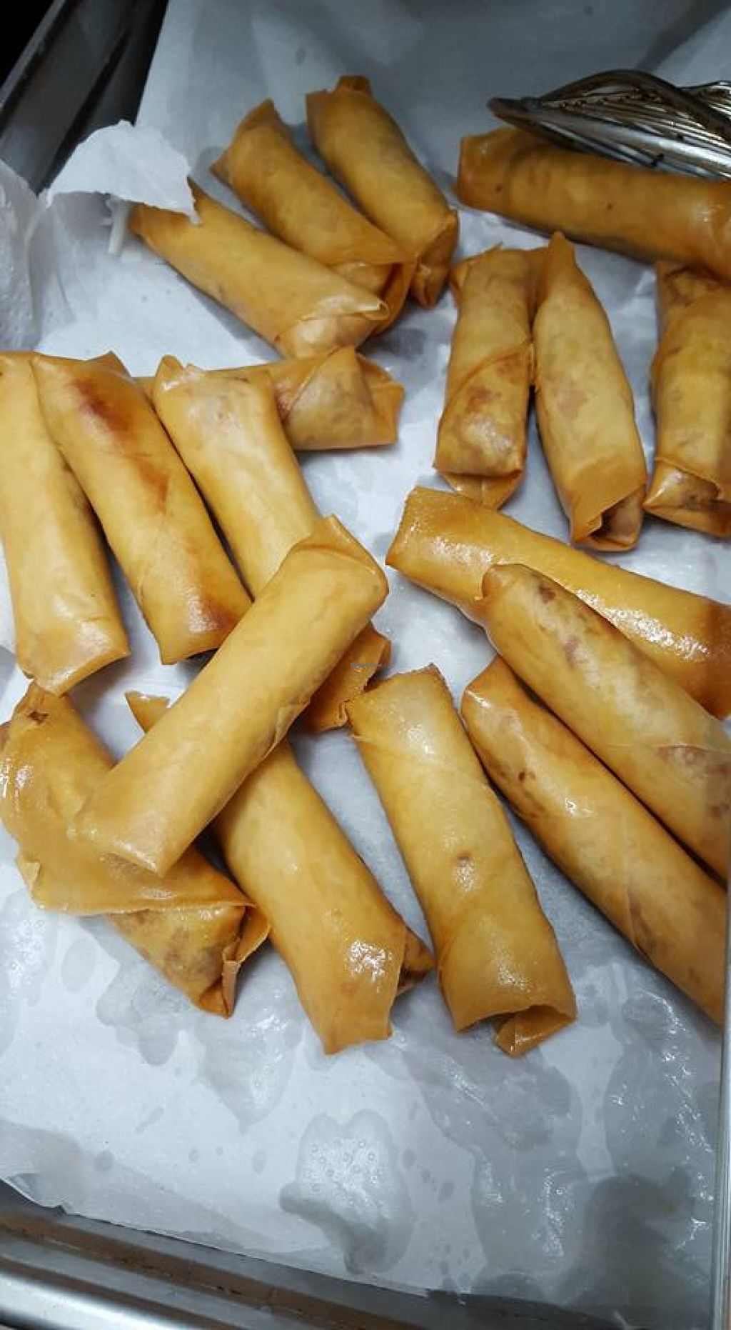 "Photo of Karma Food   by <a href=""/members/profile/community"">community</a> <br/>spring rolls  <br/> January 27, 2016  - <a href='/contact/abuse/image/68365/133837'>Report</a>"
