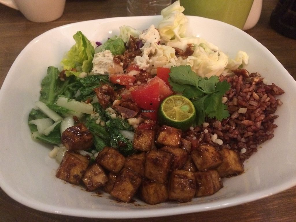 """Photo of Green Bar - Makati  by <a href=""""/members/profile/Bethevegan"""">Bethevegan</a> <br/>Asian bowl <br/> March 20, 2018  - <a href='/contact/abuse/image/68402/373320'>Report</a>"""
