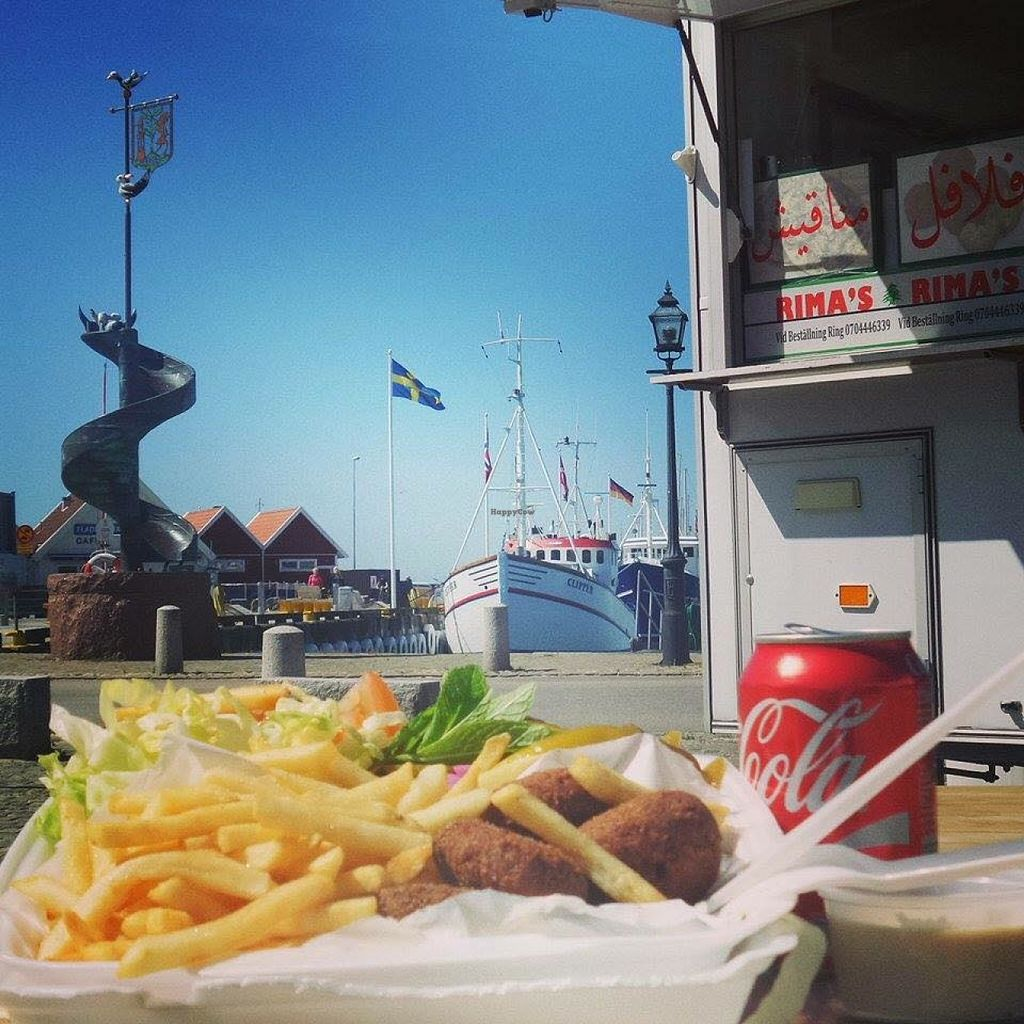 """Photo of Rima's Food Truck  by <a href=""""/members/profile/community"""">community</a> <br/>fries and falafel <br/> May 31, 2016  - <a href='/contact/abuse/image/68412/151477'>Report</a>"""