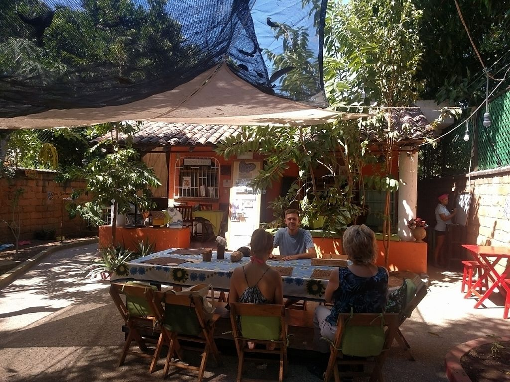"""Photo of Casita Ecovegana de Zihuatanejo Cooperativa  by <a href=""""/members/profile/Gratefulvegan13"""">Gratefulvegan13</a> <br/>Lunch in the courtyard. Very relaxing! <br/> February 13, 2017  - <a href='/contact/abuse/image/68578/226152'>Report</a>"""