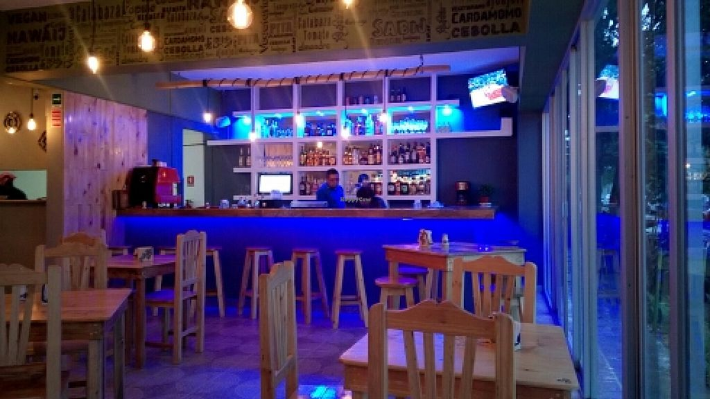 """Photo of CLOSED: Mashke Vegan Bar  by <a href=""""/members/profile/alicus"""">alicus</a> <br/>inside <br/> January 24, 2016  - <a href='/contact/abuse/image/68670/133551'>Report</a>"""