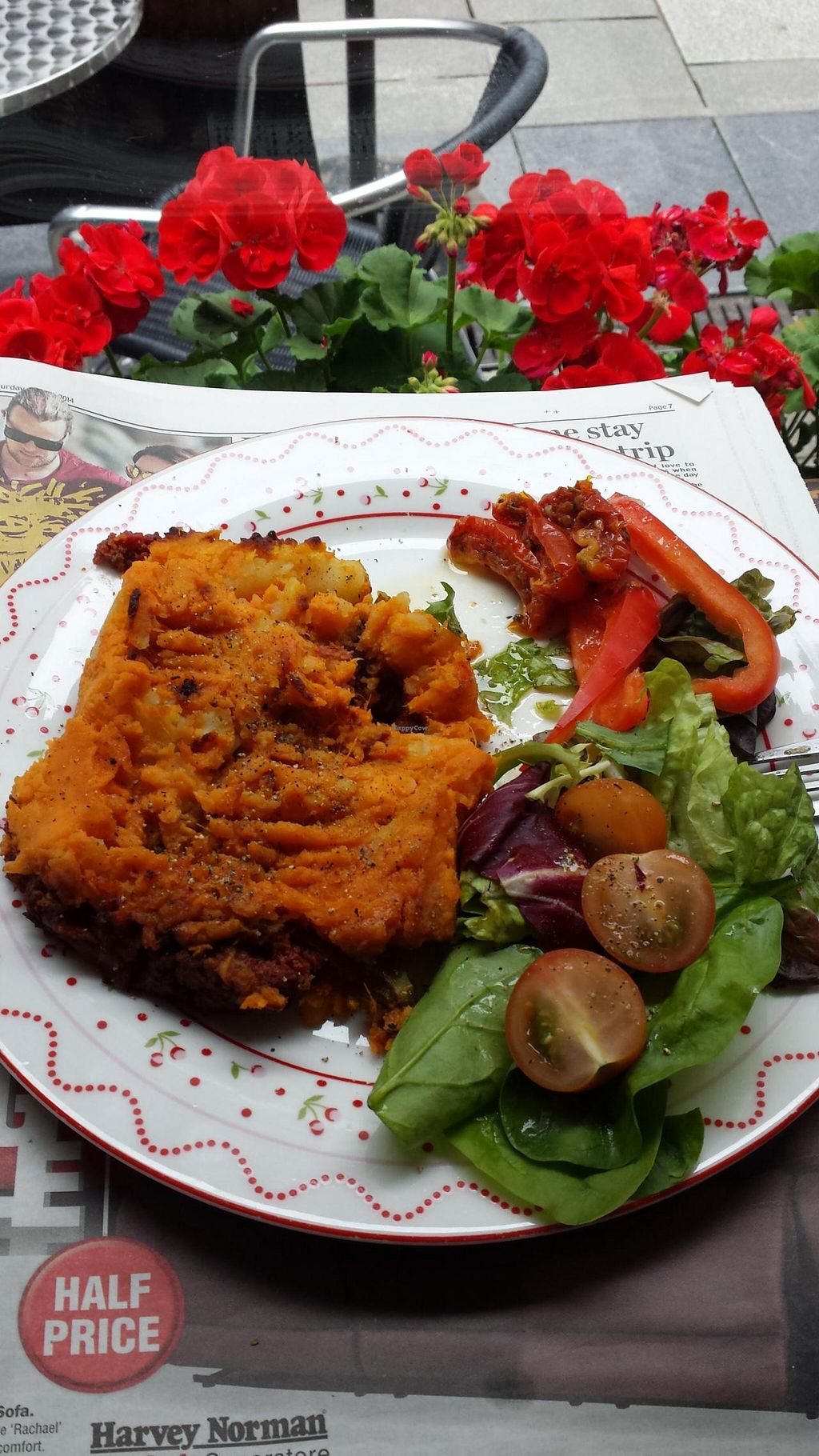 """Photo of Food for Thought  by <a href=""""/members/profile/OttVanTor"""">OttVanTor</a> <br/>vegan shepherds pie <br/> June 15, 2014  - <a href='/contact/abuse/image/6877/72058'>Report</a>"""