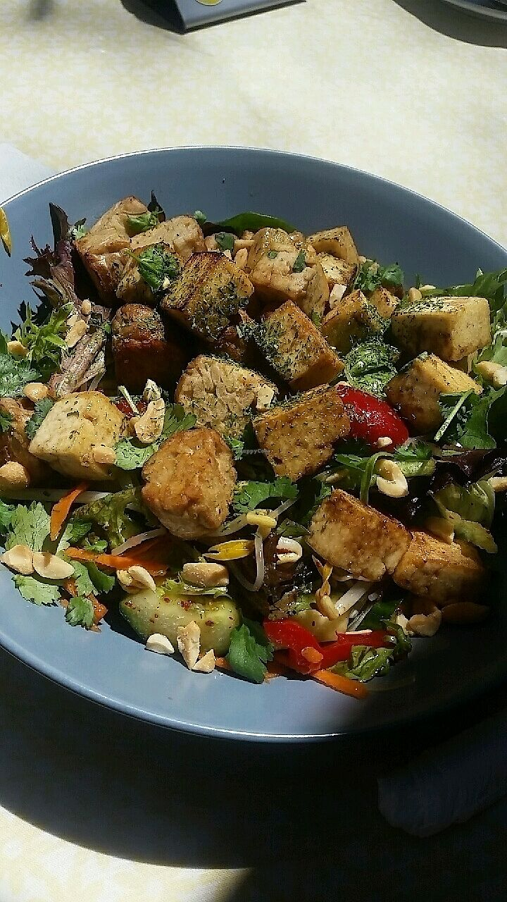 """Photo of Herbee's Garden Cafe  by <a href=""""/members/profile/FussyVegan"""">FussyVegan</a> <br/>Asian noodle salad <br/> October 24, 2017  - <a href='/contact/abuse/image/68780/318283'>Report</a>"""