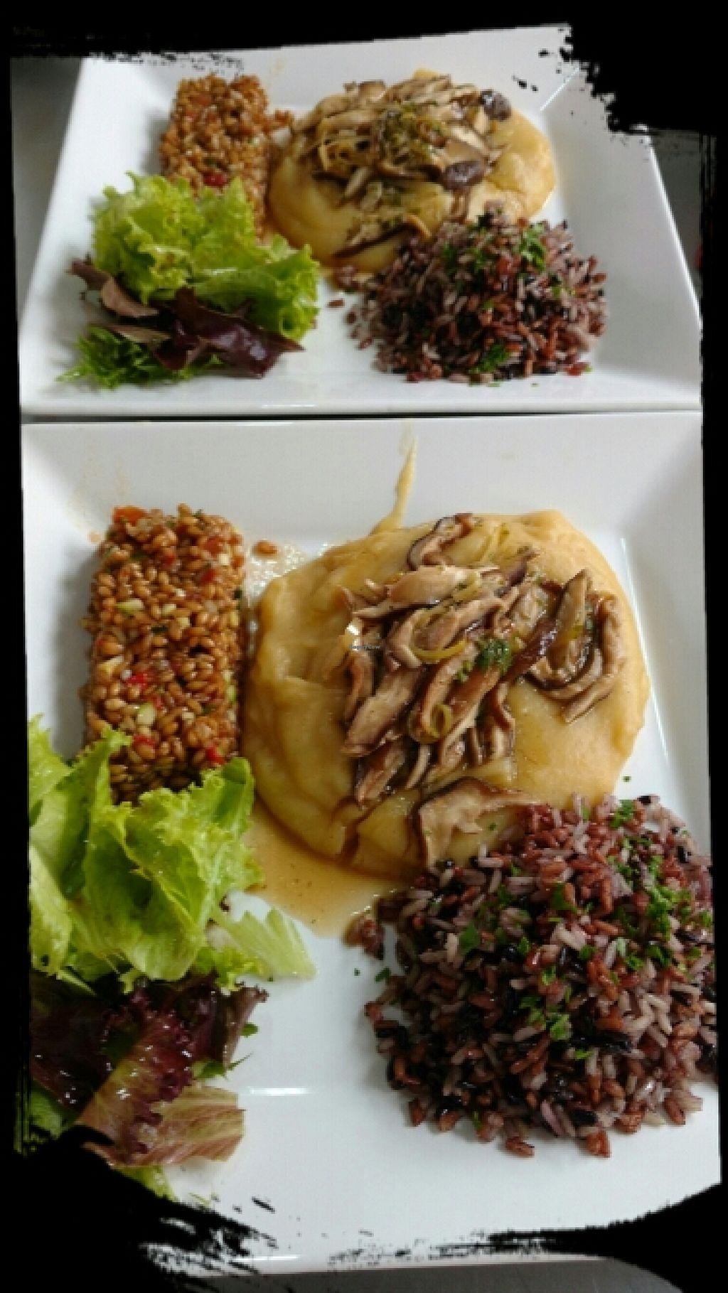 "Photo of EnRaizAr Gastronomia  by <a href=""/members/profile/Adriana%20Reboucas"">Adriana Reboucas</a> <br/>Vegan ! <br/> February 1, 2016  - <a href='/contact/abuse/image/68816/134603'>Report</a>"