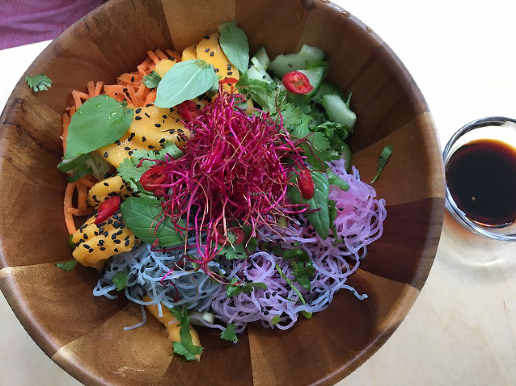 """Photo of Happy Earth  by <a href=""""/members/profile/Marianne1967"""">Marianne1967</a> <br/>Unicorn Noodle Bowl <br/> May 22, 2017  - <a href='/contact/abuse/image/68882/261275'>Report</a>"""
