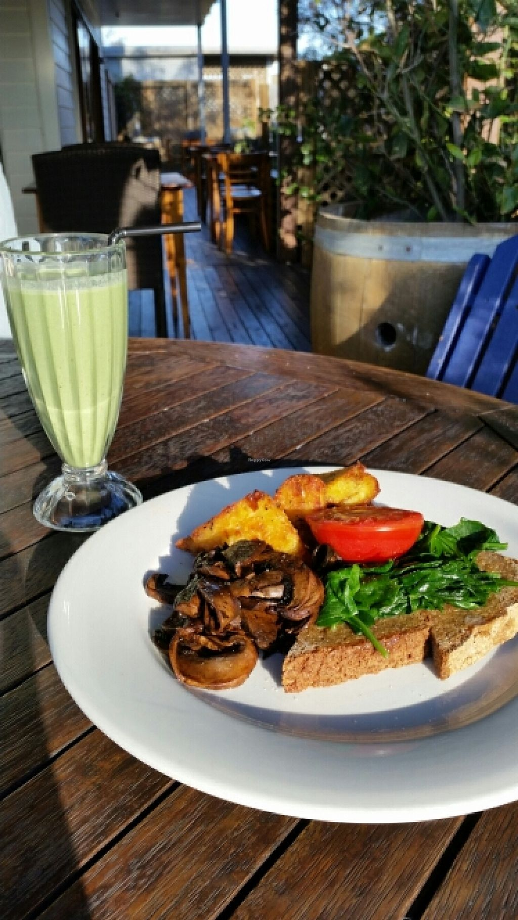 """Photo of Hislop's Cafe  by <a href=""""/members/profile/AndyTheVWDude"""">AndyTheVWDude</a> <br/>Vegan cooked breakfast & Kale smoothie <br/> April 19, 2016  - <a href='/contact/abuse/image/6890/145373'>Report</a>"""