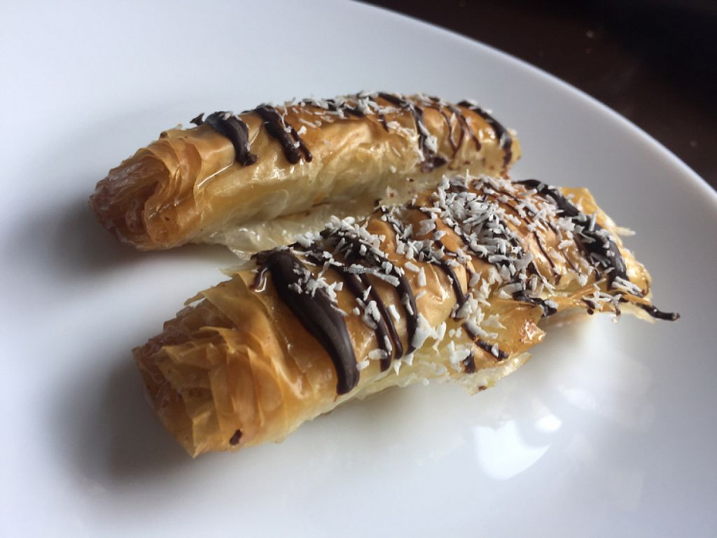"""Photo of Lavash  by <a href=""""/members/profile/bettycombs"""">bettycombs</a> <br/>vegan baklava  <br/> April 8, 2017  - <a href='/contact/abuse/image/68916/245615'>Report</a>"""
