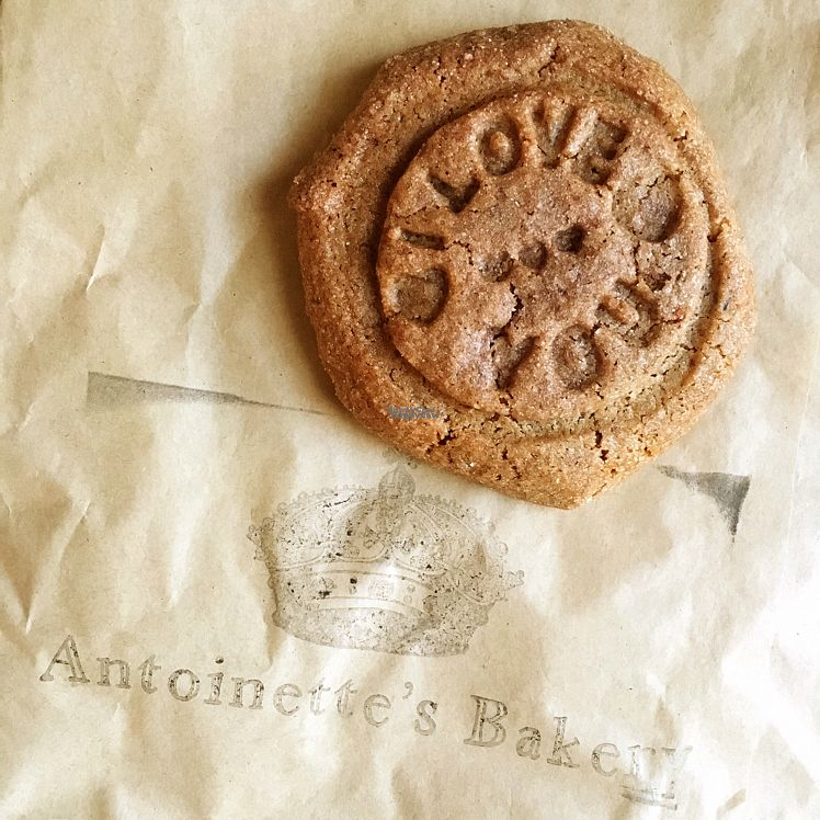 """Photo of CLOSED: Antoinette's Bakery  by <a href=""""/members/profile/whollyvegan"""">whollyvegan</a> <br/>vegan gluten-free snickerdoodle. yum! €2 <br/> September 29, 2016  - <a href='/contact/abuse/image/68958/178589'>Report</a>"""