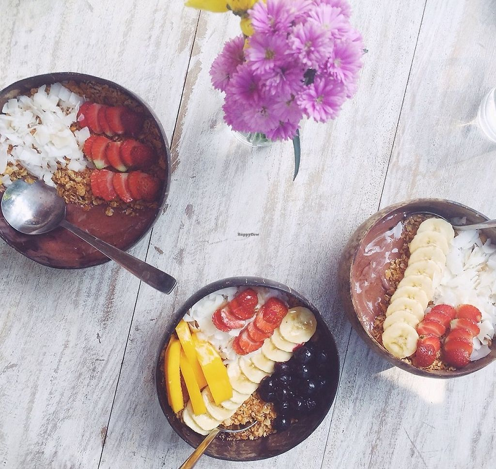 "Photo of Holly Raye's  by <a href=""/members/profile/community"">community</a> <br/>acai bowls <br/> February 12, 2016  - <a href='/contact/abuse/image/68991/276717'>Report</a>"