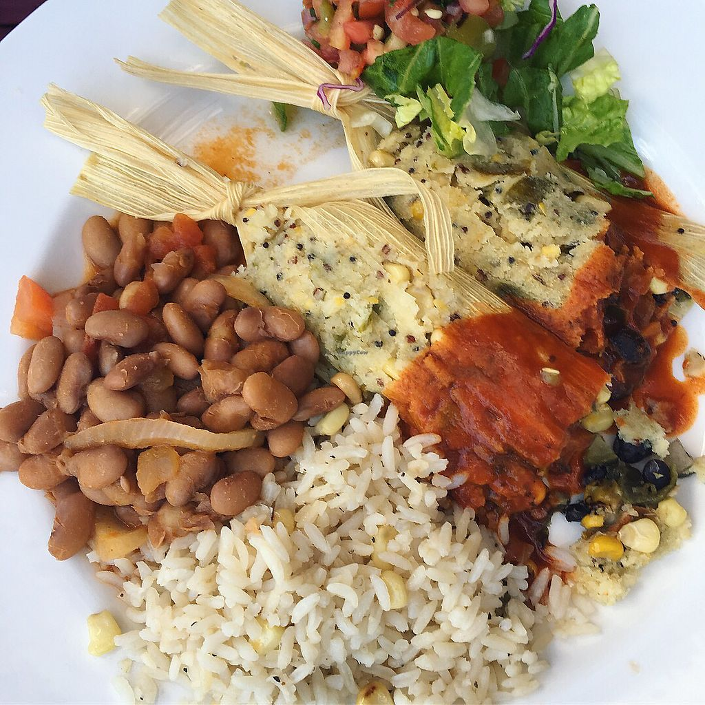 """Photo of El Charro  by <a href=""""/members/profile/AndreaBugyis"""">AndreaBugyis</a> <br/>The vegan tamales <br/> March 15, 2018  - <a href='/contact/abuse/image/69019/370791'>Report</a>"""