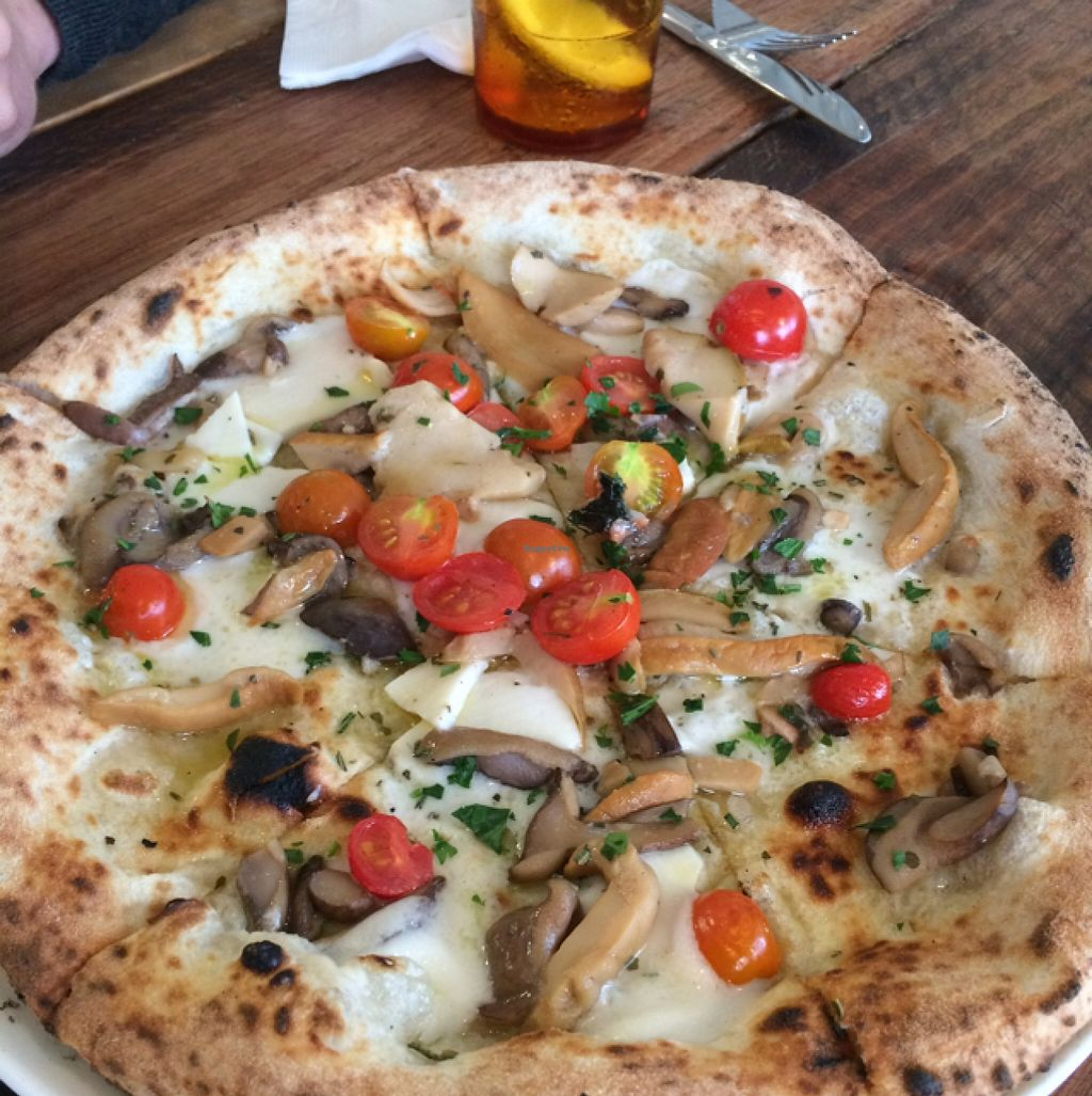 "Photo of Shop 225 Pizzeria  by <a href=""/members/profile/kateoc"">kateoc</a> <br/>vegan white base pizza (not off menu) <br/> February 3, 2016  - <a href='/contact/abuse/image/69161/134886'>Report</a>"