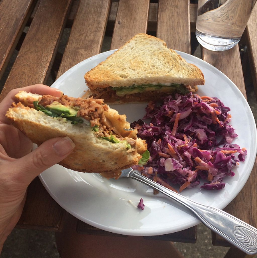 """Photo of Love Food Central  by <a href=""""/members/profile/MelanieVegan"""">MelanieVegan</a> <br/>jackfruit sandwhich with side of coleslaw <br/> November 12, 2016  - <a href='/contact/abuse/image/69177/188796'>Report</a>"""