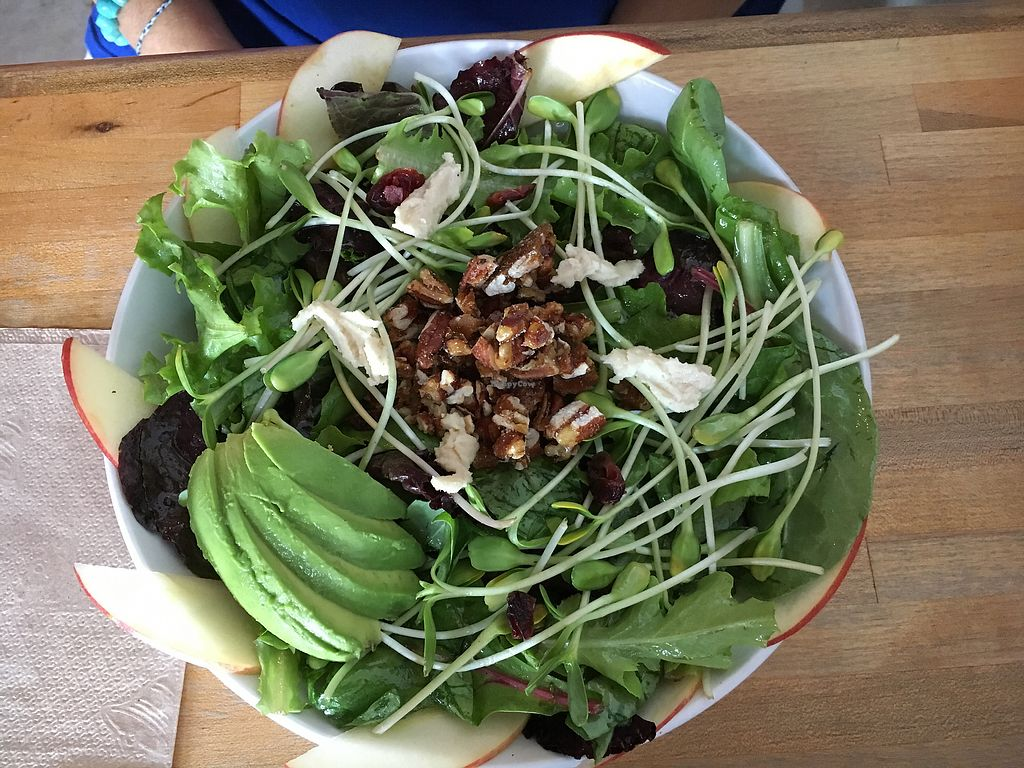 """Photo of Love Food Central  by <a href=""""/members/profile/KWdaddio"""">KWdaddio</a> <br/>361 Salad <br/> September 20, 2017  - <a href='/contact/abuse/image/69177/306624'>Report</a>"""